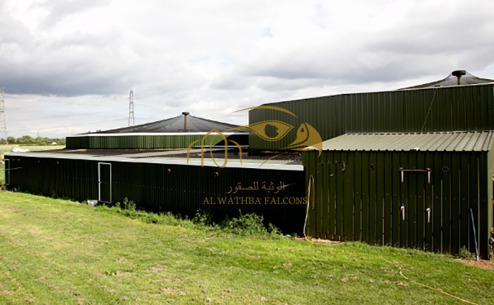 AWF UK Breeding Facility